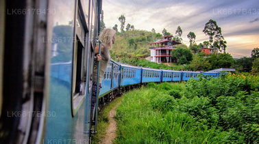 Rail Tours from Kandy